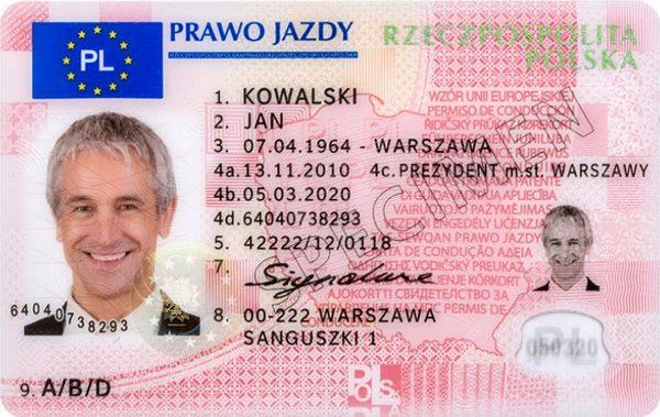 Polskie Prawo Jazdy. Wzór